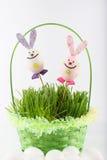 Coniglietti di Toy Easter con il canestro e le uova verdi Fotografie Stock Libere da Diritti