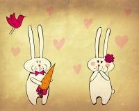 Coniglietti divertenti nell'amore Fotografia Stock Libera da Diritti