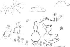 Coniglietti ed anatre svegli Fotografia Stock