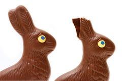 Coniglietto alimentare fotografia stock