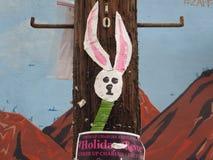 Coniglietto, Austin Texas immagini stock