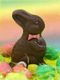 Coniglietto del cioccolato immagine stock