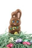 Coniglietto del cioccolato in nido Fotografia Stock