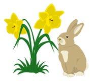 Coniglietto di pasqua con i daffodils Fotografia Stock Libera da Diritti