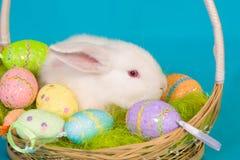 Coniglietto di pasqua con il canestro e le uova Fotografia Stock