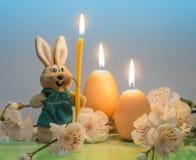 Coniglietto di pasqua con le candele sotto forma delle uova su un fondo blu, un ramo con i fiori immagini stock