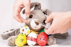 Coniglietto di pasqua con le uova Fotografia Stock Libera da Diritti