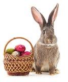 Coniglietto di pasqua con le uova colorate Immagine Stock Libera da Diritti