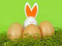 Coniglietto di pasqua, con le uova decorative Fondo di Pasqua e della molla Fotografia Stock