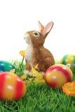 Coniglietto di pasqua con le uova su un prato inglese Fotografia Stock Libera da Diritti