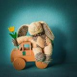Coniglietto di pasqua con un tulipano che viaggia in un'automobile Fotografia Stock Libera da Diritti