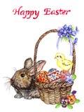 Coniglietto di pasqua vicino al canestro con le uova con i fiori tradizionali della pittura, del pulcino e della molla: viole del Fotografia Stock Libera da Diritti
