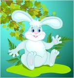 Coniglietto divertente del fumetto immagine stock libera da diritti
