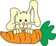 Coniglietto e carota Immagini Stock