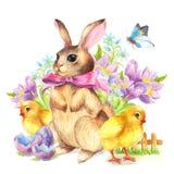 Coniglietto e pollo felici della cartolina d'auguri di Pasqua Immagini Stock Libere da Diritti