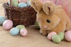 Coniglietto ed uova di pasqua Immagine Stock