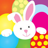 Coniglietto felice di Pasqua Fotografia Stock