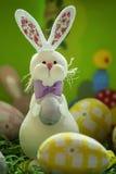 Coniglietto orientale con le uova Immagine Stock