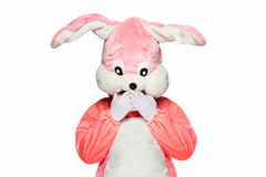 Vestito rosa del coniglio isolato su fondo bianco Fotografia Stock Libera da Diritti