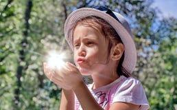 Coniglietto soleggiato Fotografia Stock