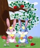 Coniglietto sveglio due in una radura della foresta Ragazzo e ragazza, molla di concetto, amore illustrazione vettoriale