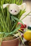 Coniglietto tricottato su erba verde fotografie stock libere da diritti