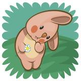 Coniglietto vergognoso con il fiore Immagini Stock