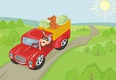 Coniglio in automobile illustrazione vettoriale