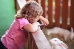 Coniglio bianco d'alimentazione della bambina Fotografia Stock