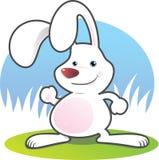 Coniglio bianco sorridente Fotografia Stock