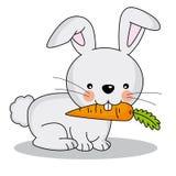 Coniglio che mangia una carota