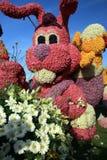 Coniglio del fiore immagine stock