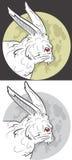 Coniglio della luna Immagine Stock