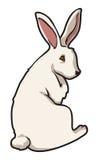 Coniglio di coniglietto royalty illustrazione gratis