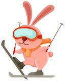 Coniglio di corsa con gli sci Immagini Stock
