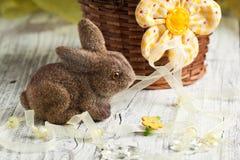 Coniglio di Pasqua Fotografia Stock Libera da Diritti