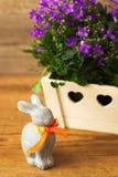 Coniglio di Pasqua di festa e bella campanula dei fiori immagini stock