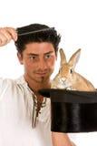 Coniglio divertente Fotografie Stock Libere da Diritti