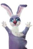 Coniglio divertente del burattino Fotografia Stock Libera da Diritti