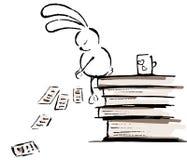 Coniglio ed i libri Fotografia Stock
