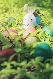 Coniglio ed uova di Pasqua variopinte in natura Fotografie Stock Libere da Diritti