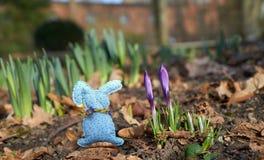 Coniglio fatto a mano fra i fiori della molla immagine stock libera da diritti