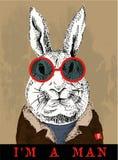 Coniglio fresco retro Immagine Stock Libera da Diritti