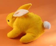 Coniglio giallo Immagini Stock Libere da Diritti