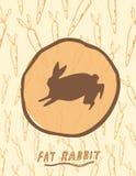 Coniglio grasso Fotografia Stock
