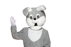 Coniglio divertente della peluche isolato su fondo bianco Immagine Stock
