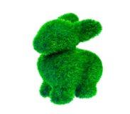 Coniglio isolato dell'erba verde Immagine Stock Libera da Diritti