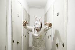 Coniglio mascherato della donna Fotografia Stock