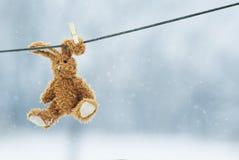 Coniglio molle divertente del giocattolo che pende da una corda che indossa una molletta da bucato o Fotografie Stock