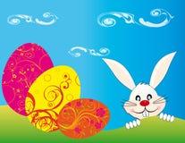 Coniglio orientale che cerca colore delle uova Fotografia Stock
